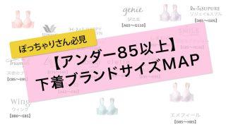 アンダー85以上の下着ブランドサイズMAP【E85~I105】